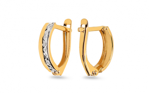 Two Tone Gold Engraved Latch Back Earrings - IZ11349