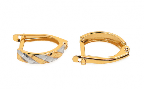 Two Tone Gold Engraved Latch Back Earrings - IZ11351